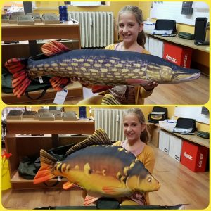 Budai Horgászcentrum horgászbolt székesfehérvár