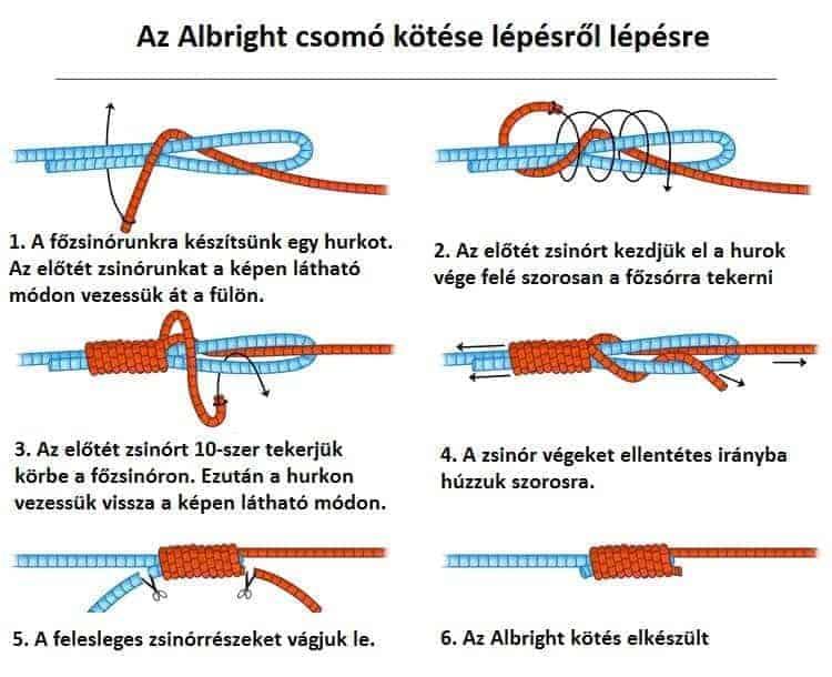 albright csomó