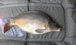 szakáts kerti horgásztó