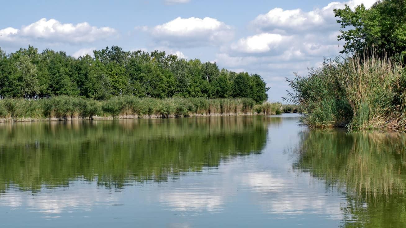 teruleti jegy árak 2019 bács kiskun megye szelidi tó