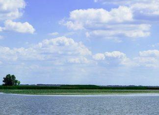 tisza-tavi horgászat horgászrend