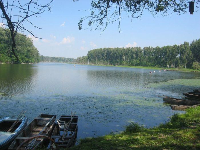 tisza-tavi horgászat poroszló
