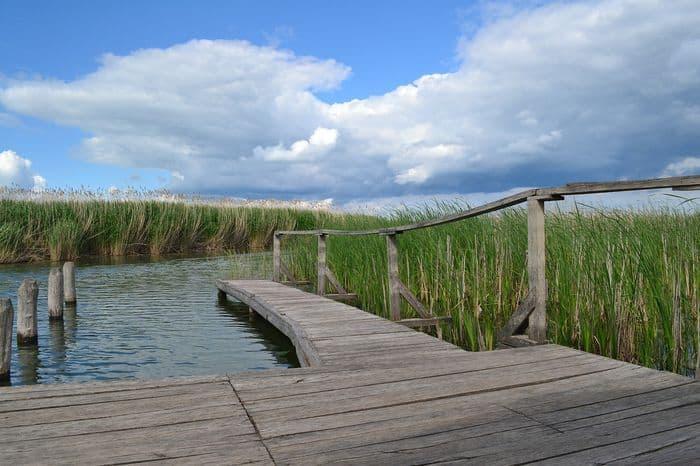 tisza-tavi horgászat